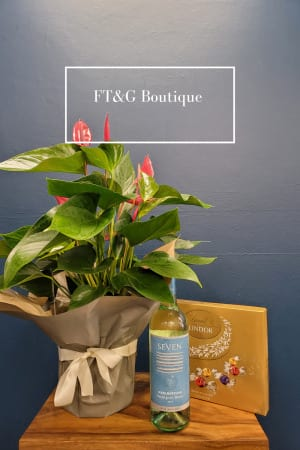 Anthurium and Gifts