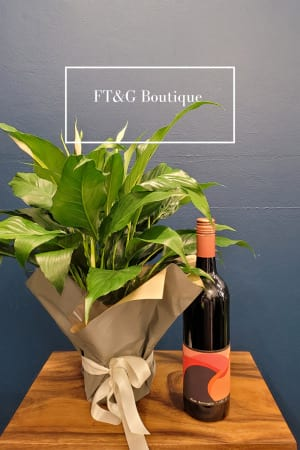 Madonna Lily Plant and Red Wine
