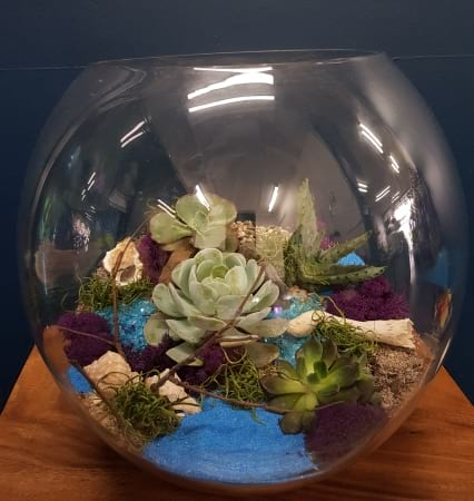 Betty`s Terrarium