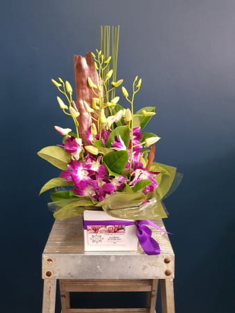 Nicola`s Fresh Orchids